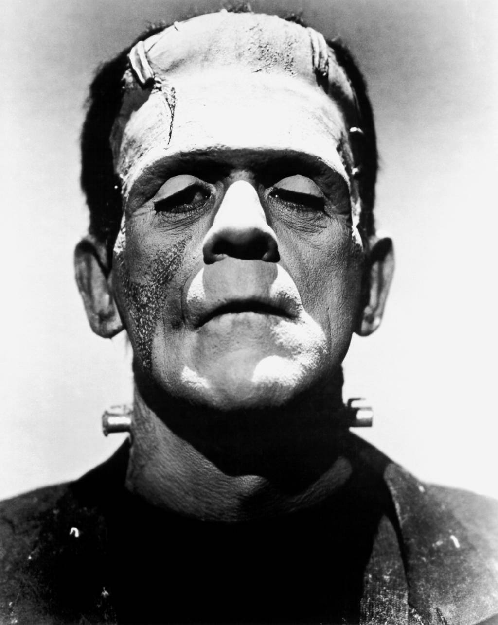 loss and isolation themes of frankenstein writework promotional photo of boris karloff from the bride of frankenstein as frankenstein s monster