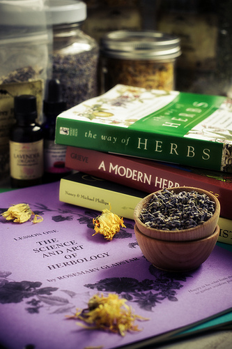 an overview of the herbal extracts and hormones