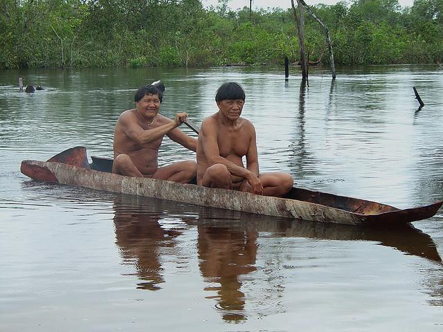 kalapalo indians of central brazil essay