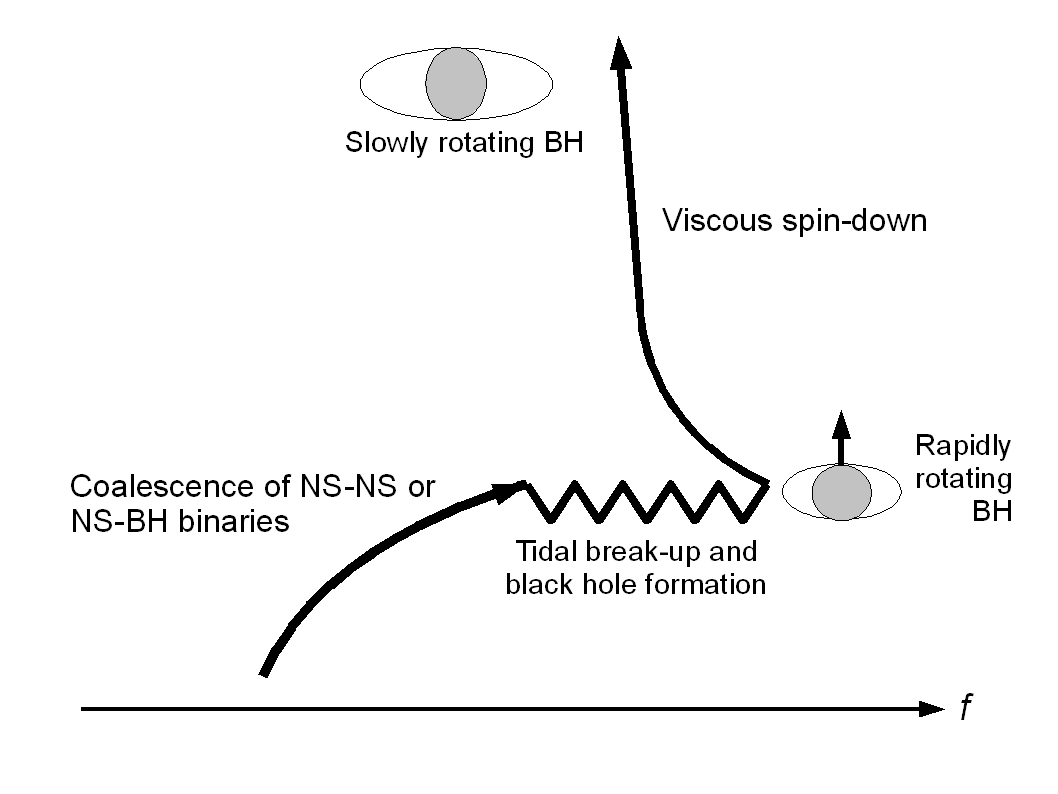the concepts properties and processes involved with the phenomenon of black holes Evaporation is one of the two forms of vaporization it is the process whereby atoms or molecules in a liquid state (or solid state if the substance sublimes) gain sufficient energy to enter the.