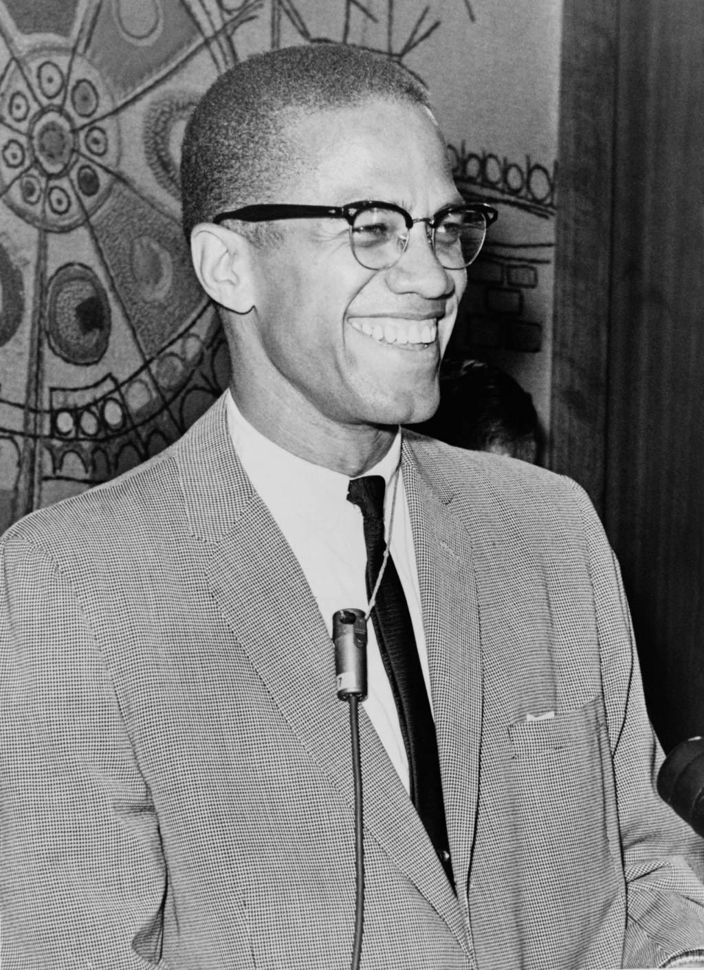 warriors don t cry  malcolm x