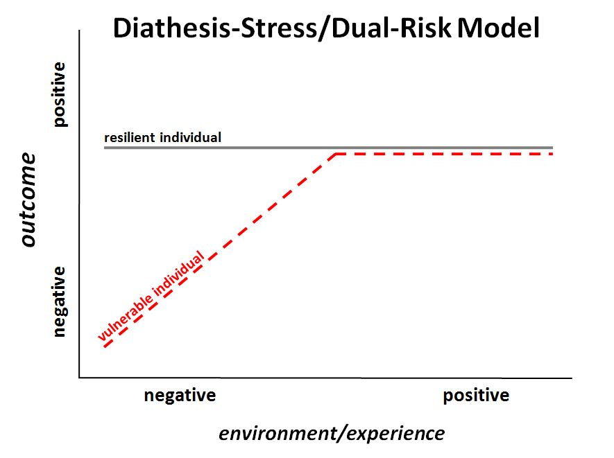 essays models stress The diathesis-stress model illustrates the dynamic between a diathesis and an individual's stress and how the effects of this dynamic can influence an individual's behavior.