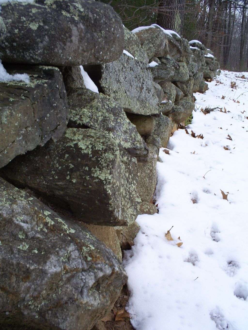 Definition Essay Love This Is The Stone Wall At Frosts Farm In Derry New Hampshire Which He Essay On Genetic Engineering also Essay English Example This Essay Compares And Contrasts Two Poems Mending Wall By  Money Can Buy Happiness Essay