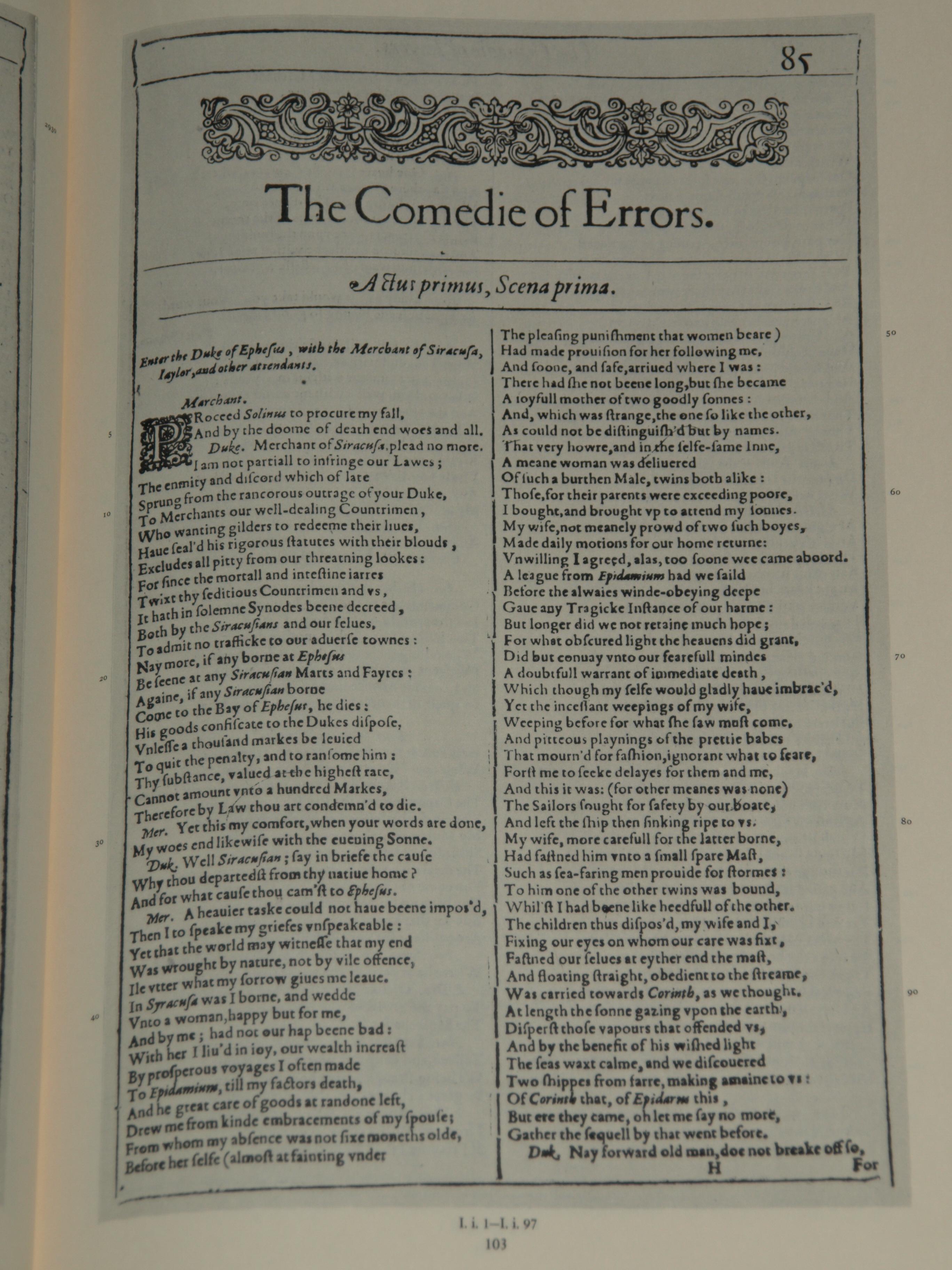 Comedy of errors essay