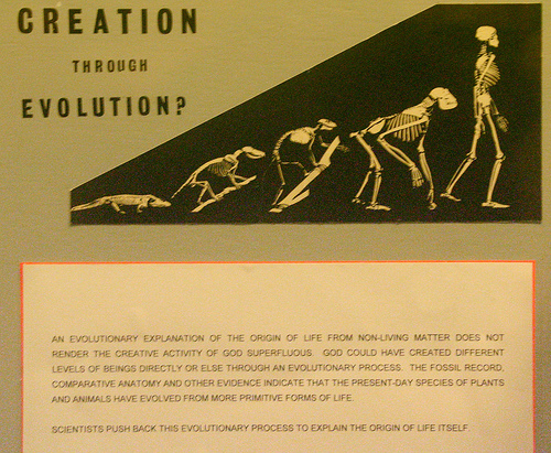 What is Creationism?