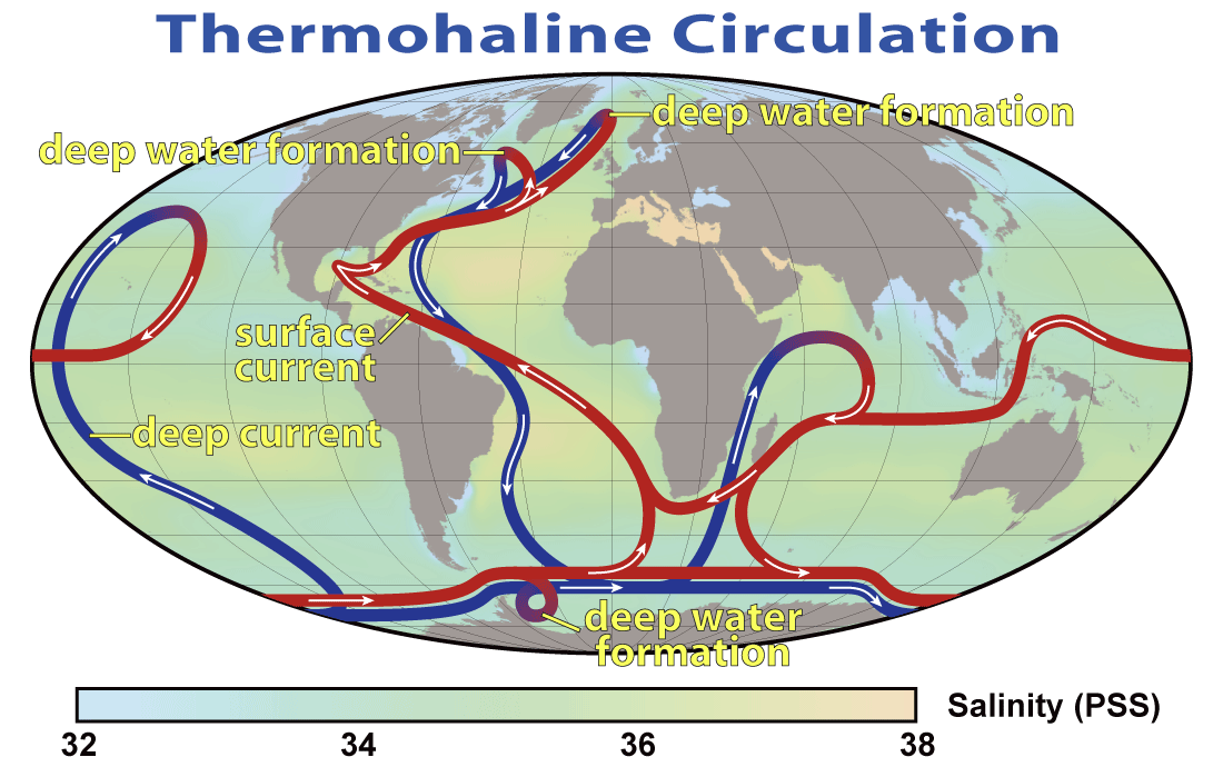 Man and ocean writework this map shows the pattern of thermohaline circulation also known as gumiabroncs Gallery