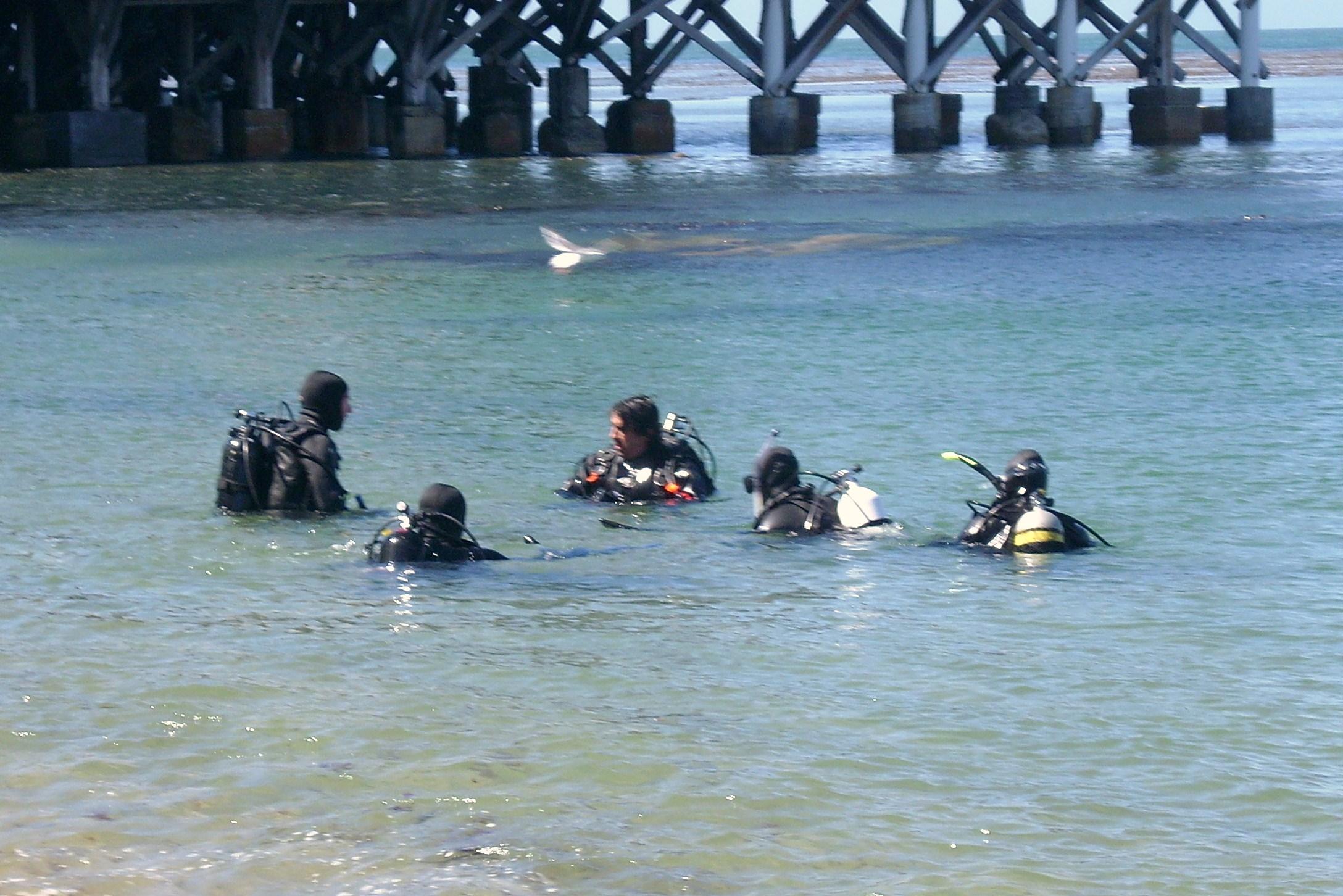 Scuba diving thesis statement