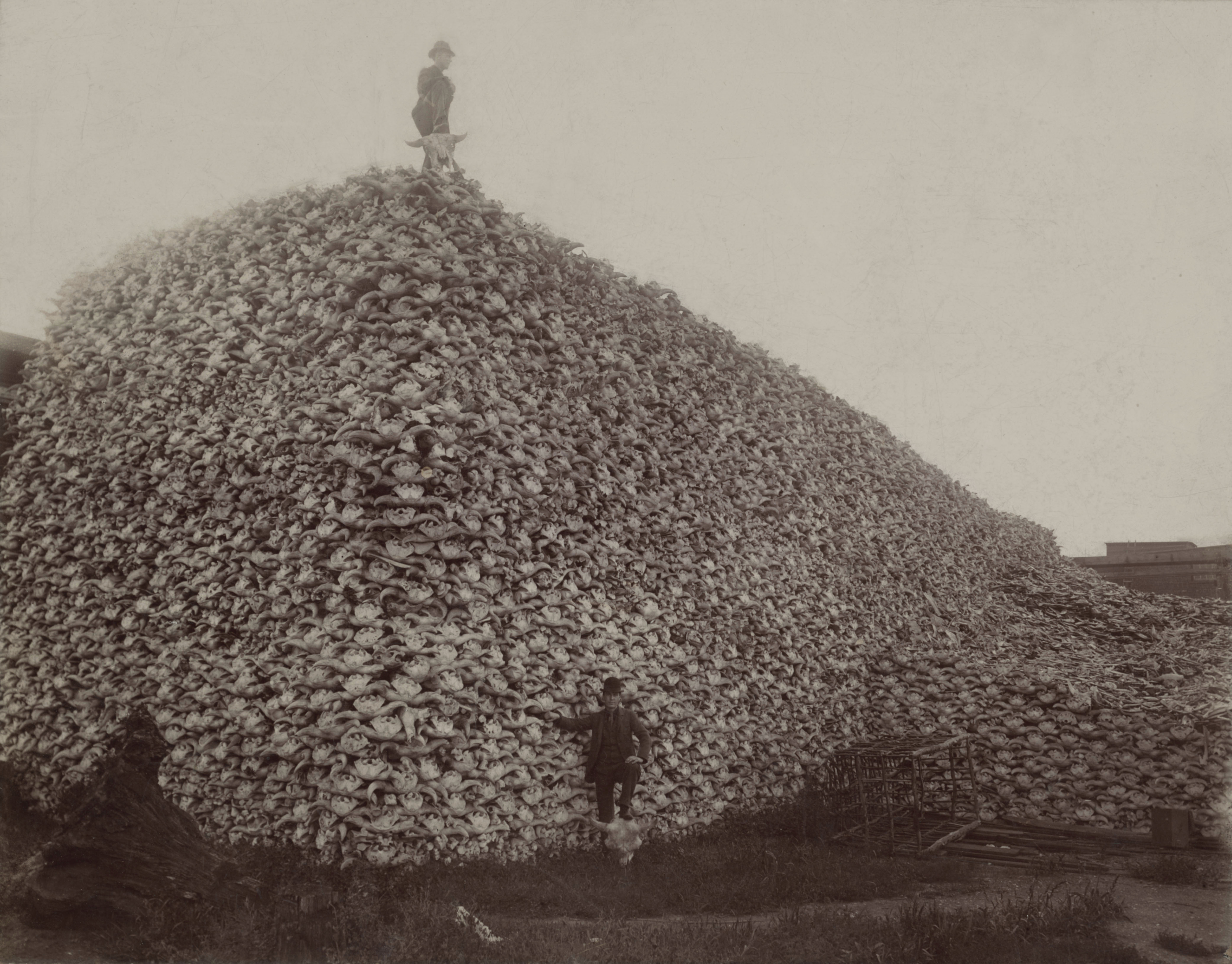Cheyenne Indians and the Ghost Dance&nbspTerm Paper