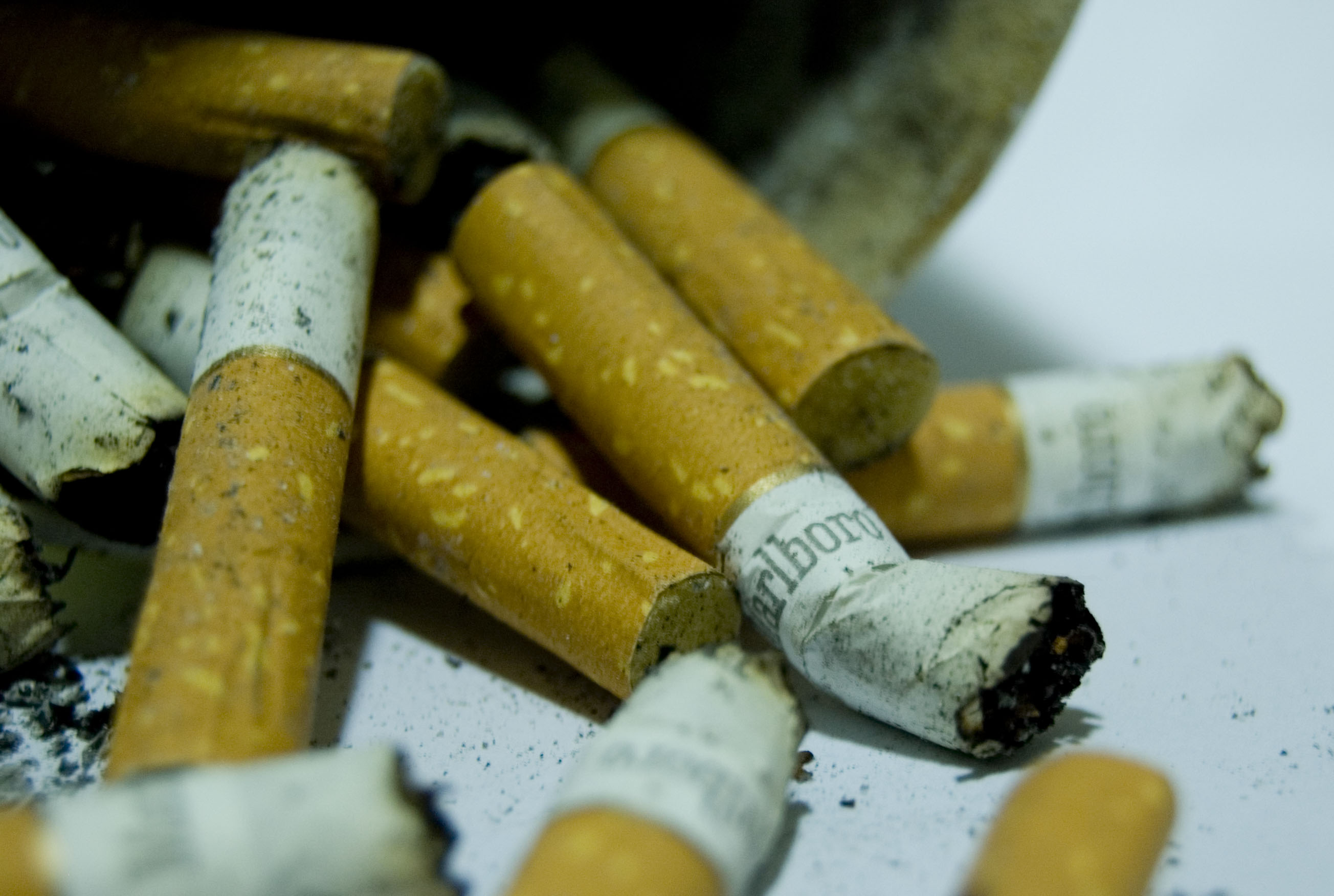 marlboro vs doral essay Cigarettes (52) cigarette papers (3) marlboro smooth menthol box 1 carton in club only select a club doral silver 100s 1 carton.