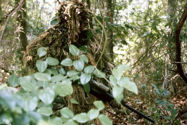 The snipers protecting African rhinos   My Good Planet The Trauma Hero  From Wilfred Owen to    Redeployment    and    American Sniper       Los Angeles Review of Books