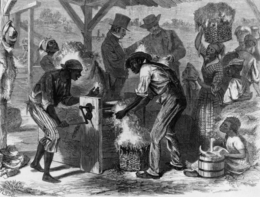 Cotton gin and slavery essay ideas