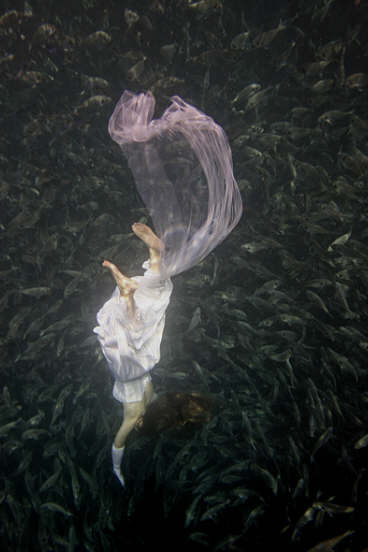 Kate Chopin And The Cult Of True Womanhood Brief Essay In Response  Photoportrait Of Writer Kate Chopin English Underwater Photograph Of A  Woman Plunging To Her Death Rather Than Face Unwanted Marriage