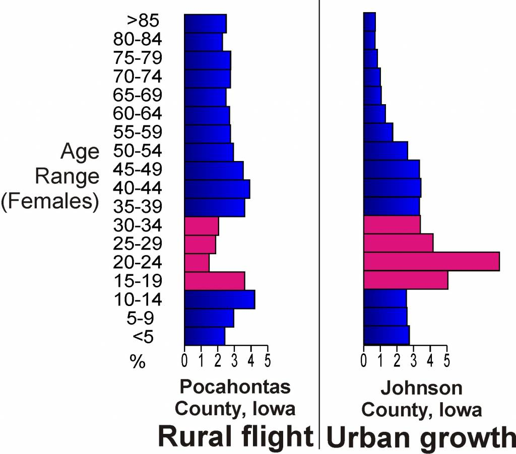 migration city and rural areas essay Advantages & disadvantages of rural-urban migration by ocean malandra  updated june 27, 2018 a hundred years ago, only 20 percent of the world's population lived in urban areas, but the 20th century saw a dramatic shift that marks a turning point in history.