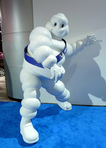 michelin case study