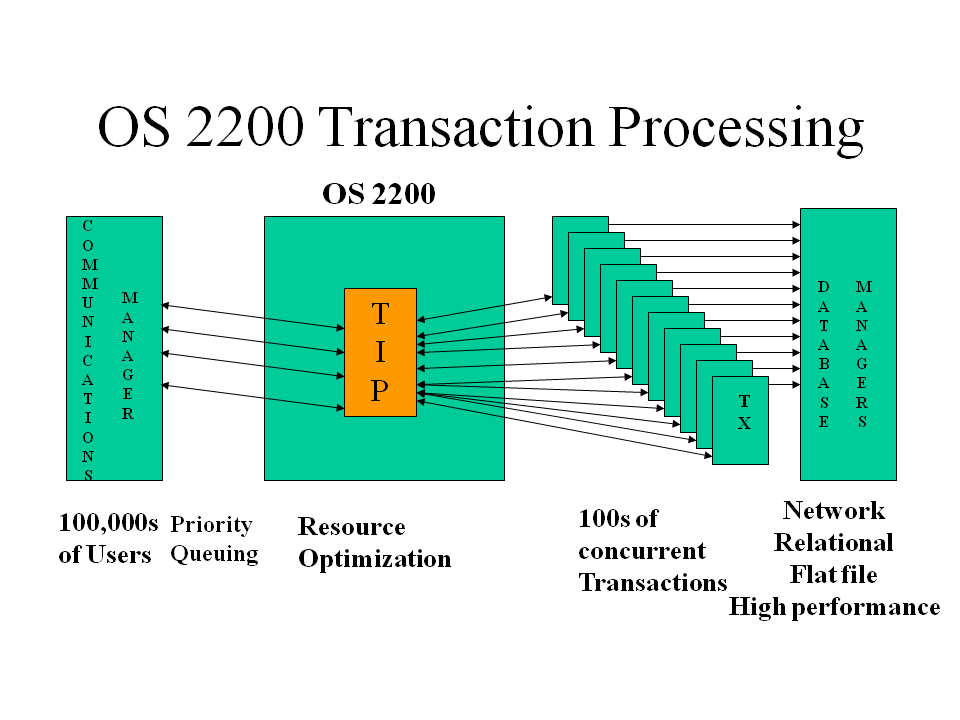 Transaction Processing System Essay Sample