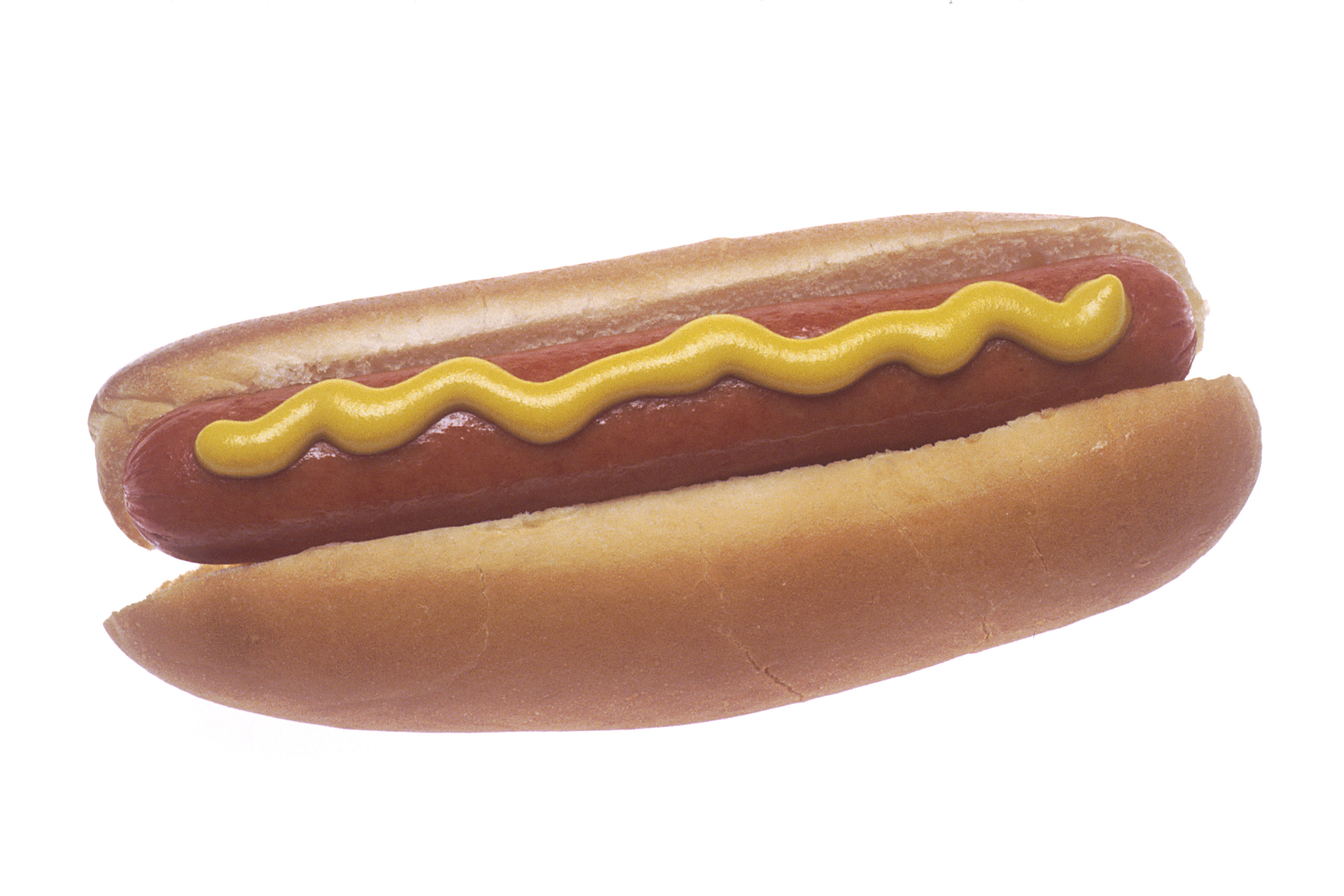 hot dogs essay
