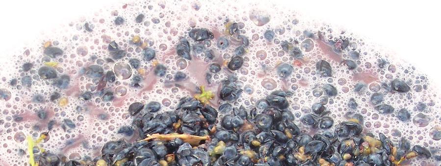 chemical analysis on winemaking