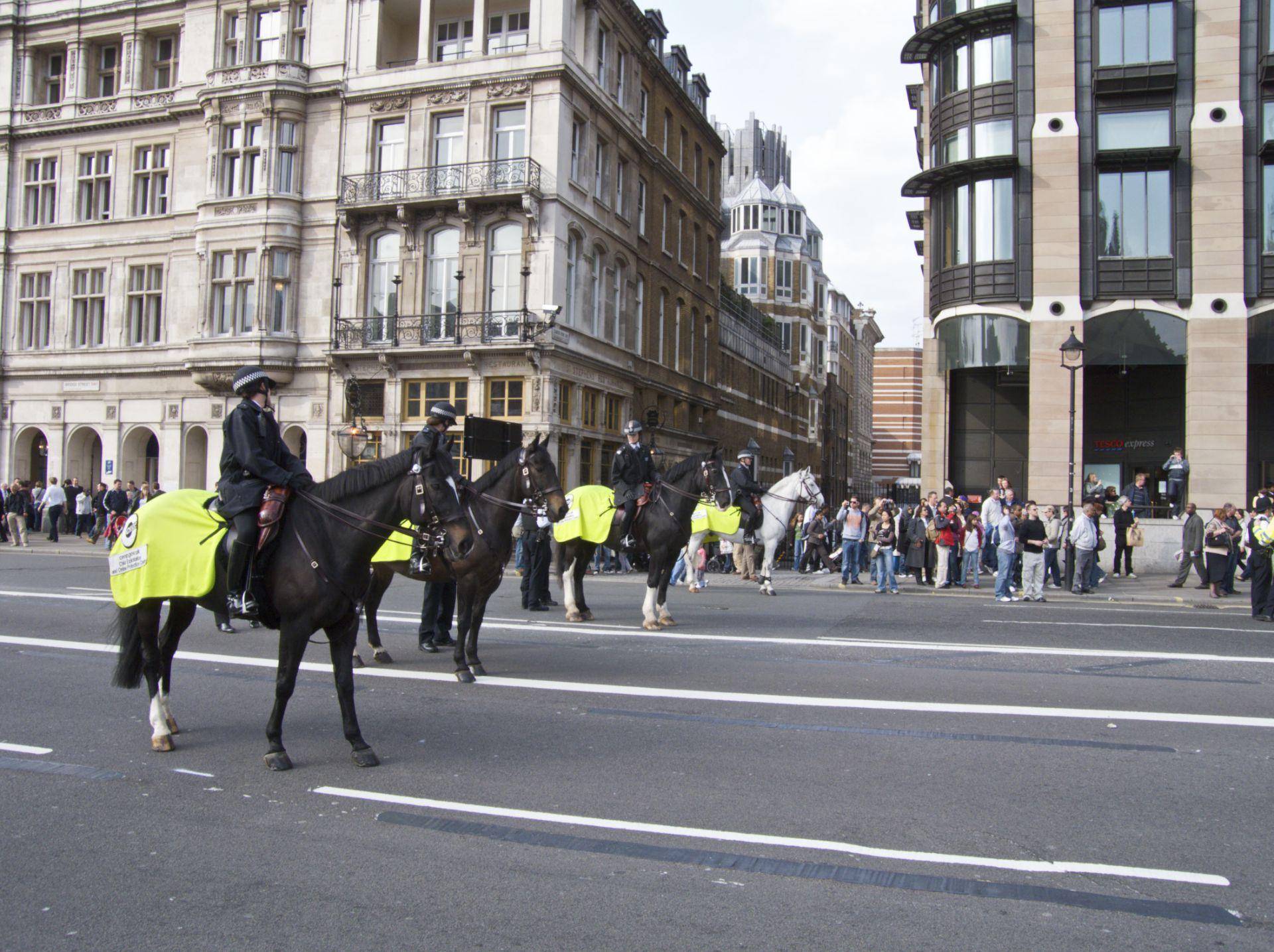 discrimination in the british police essay
