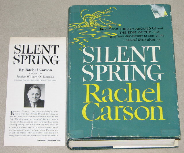 silent spring essays Silent spring analysis silent spring is a book that makes just about everyone think, except for the major chemical companies that it was attacking this is.
