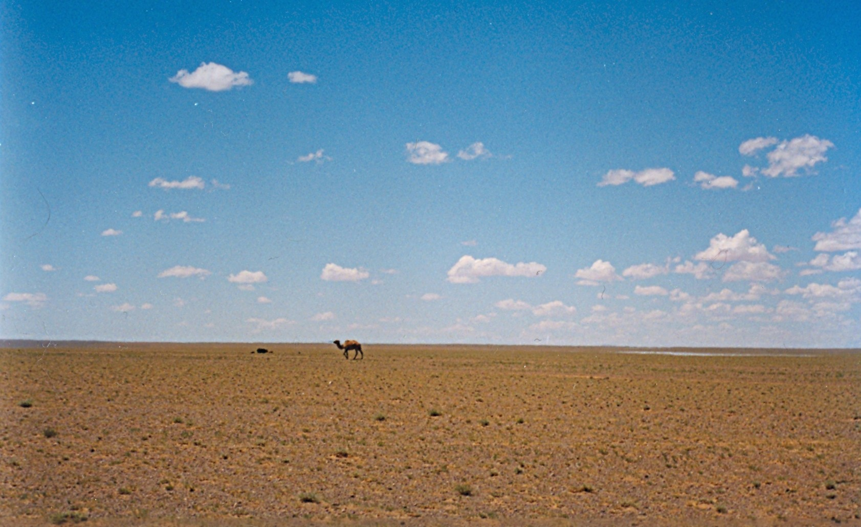 essays on desertification Photo essays dioramas reveal the desertification of mongolia  explores what  the desertification of their home means for mongolian nomads.
