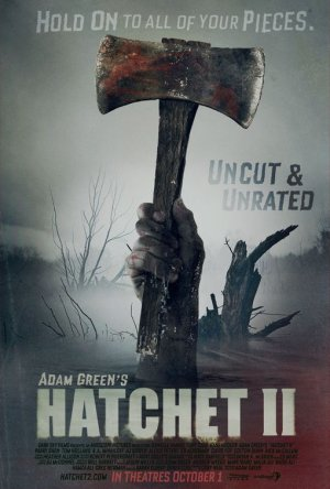 Book Report On Quot Hatchet Quot By Gary Paulsen Writework