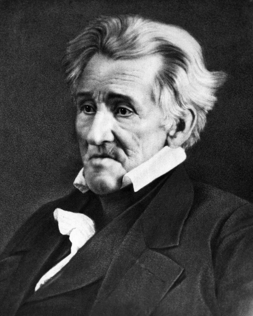was andrew jackson a hero or a villain essay 91 121 113 106 was andrew jackson a hero or a villain essay