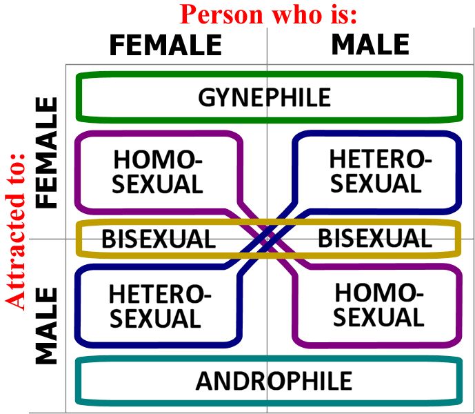 Homosexuality is a choice essay