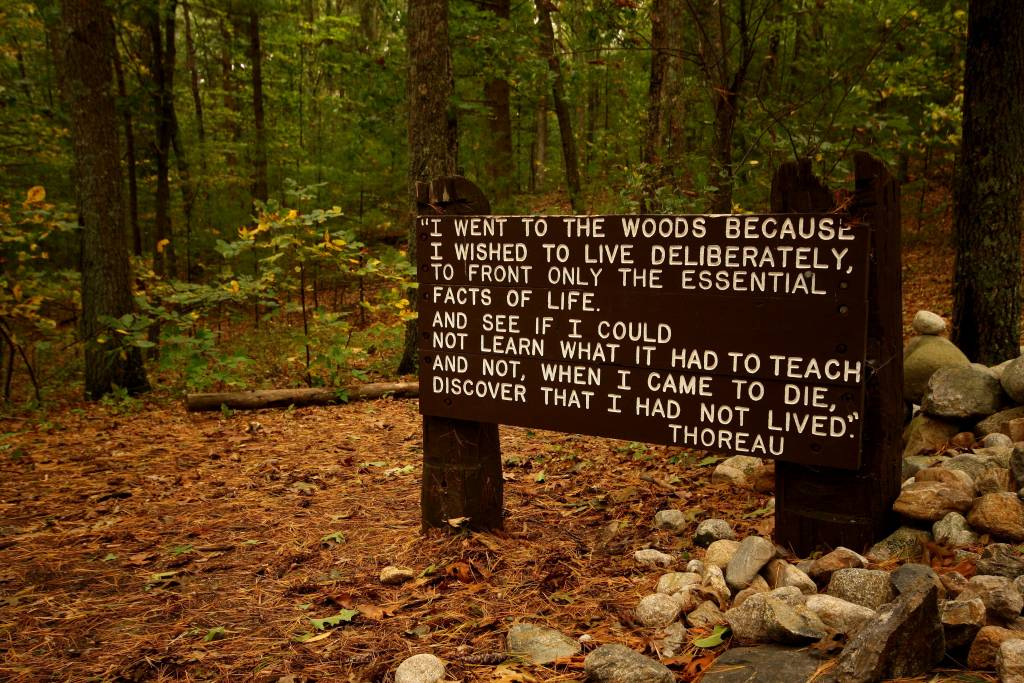 "walden and transcendentalism essay Essays on transcendentalism we have found transcendentalism and walden chosen passage ""every morning was a cheerful invitation to make my life of equal."