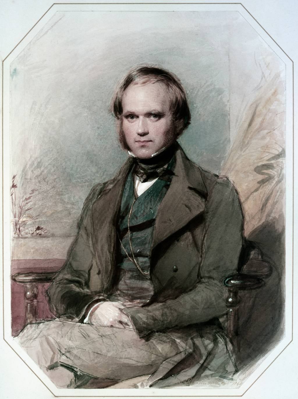 charles darwin s theory non constancy of species branching charles darwin as a young man probably subsequent to the galaacutepagos