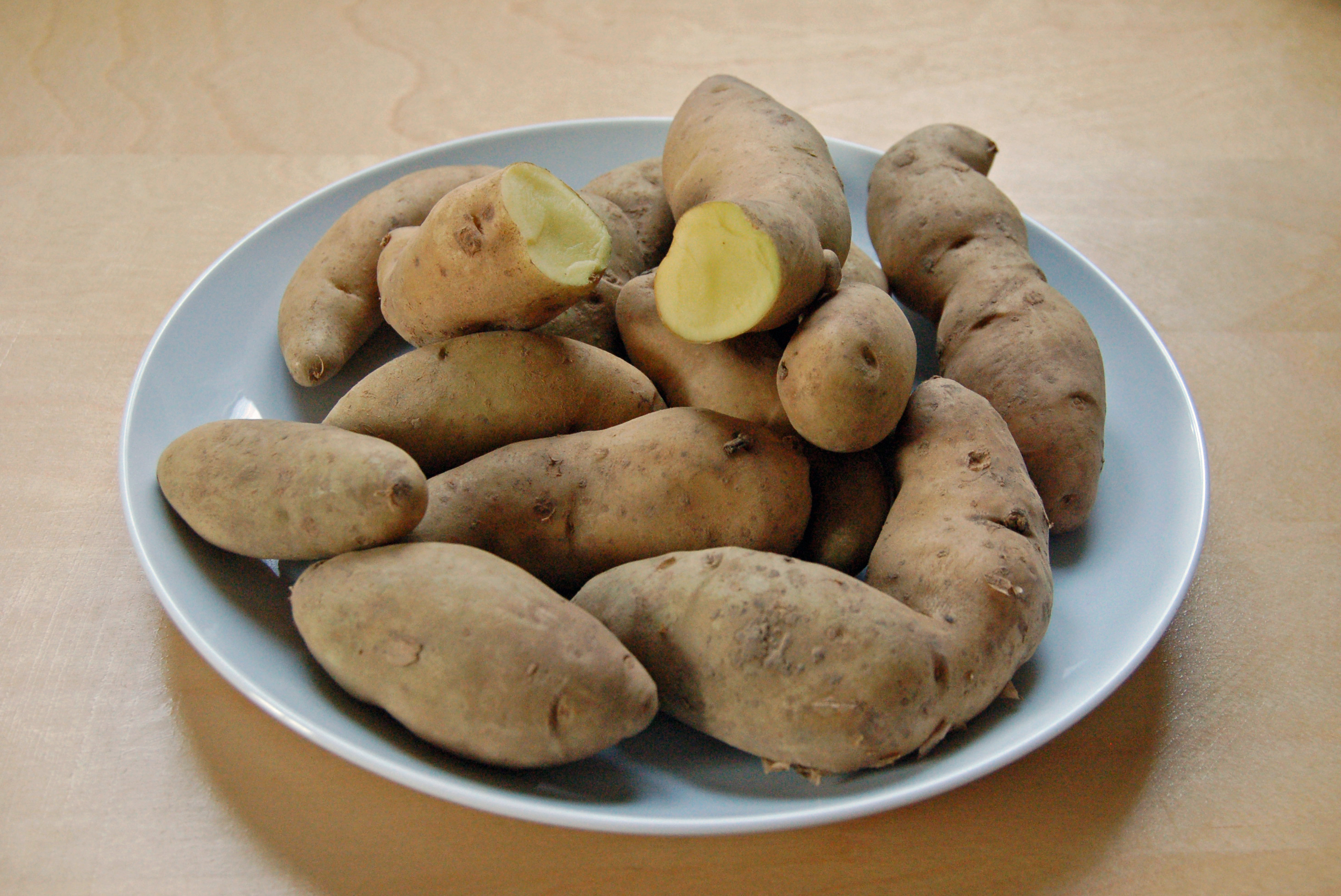 osmosis in potato course work Coursework writing service essay  osmosis potential in potatoes biology  osmosis is a special type of diffusion which involves the movement of water molecules .