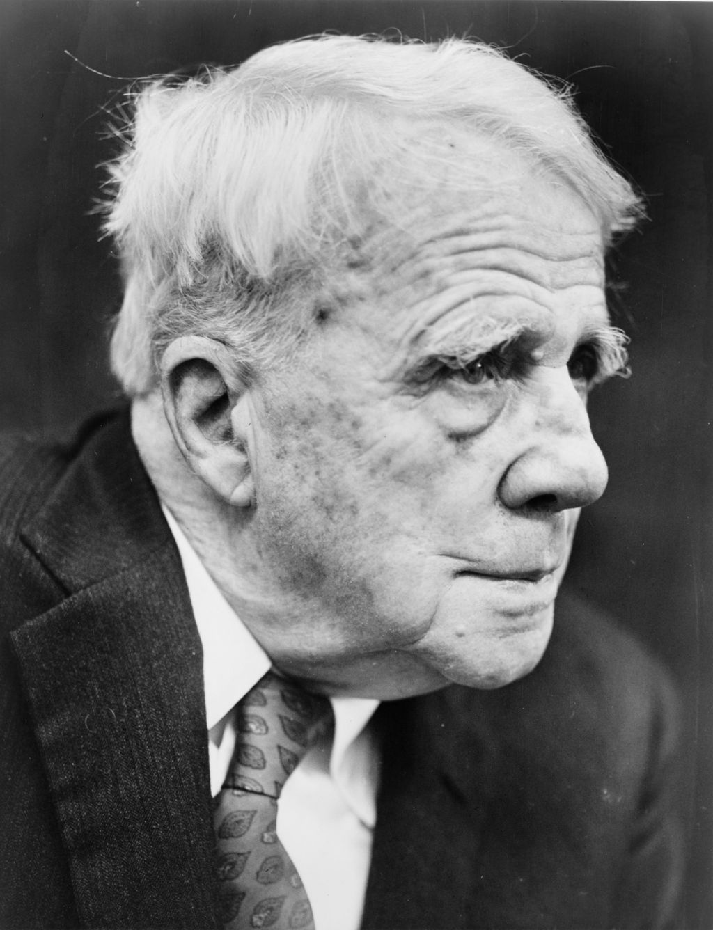 a biography of robert frost including his decendence education robert frost