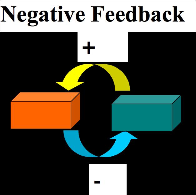 negative feedback loop psychology