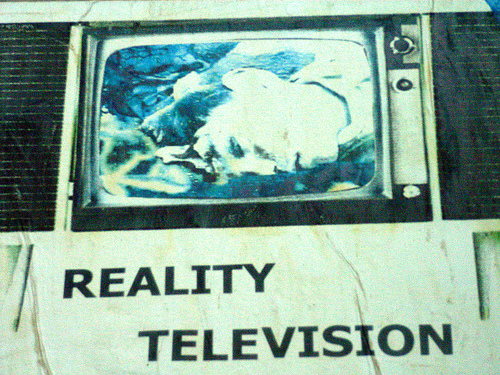 the impact of reality tv essay The undersigned, appointed by the dean of the graduate school, have examined the dissertation entitled reality tv and interpersonal.