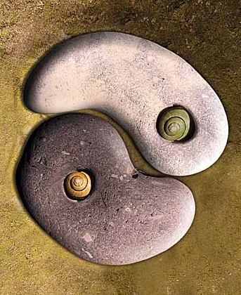 yin and yang essay The concept of yin & yang is as beautiful as it is straightforward the symbol is  known all across the globe and the depth of its meaning has.