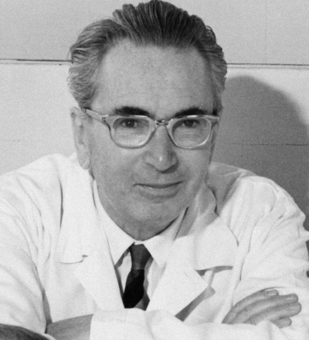 man's search for meaning essay example Viktor frankl was born in vienna on march 26,  but frankl's most famous example is achieving meaning by way of suffering  in man's search for meaning,.