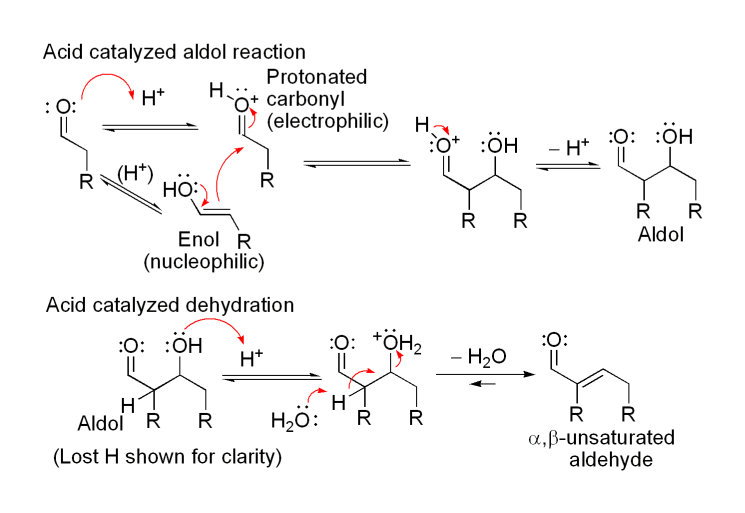 the aldol condensation synthesis of dibenzalacetone essay Aldol condensation notes  the final product is called 1,5-diphenyl-2,4-pentadiene-3-one or dibenzalacetone  since it's an aldol reaction and not a condensation .