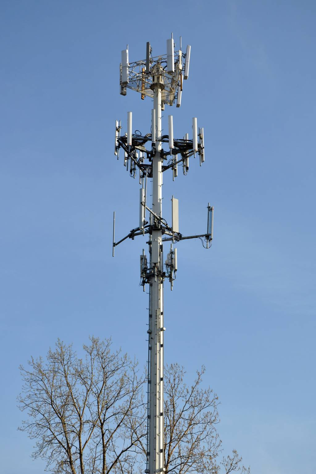 why the legal driving age should not be increased a persuasive english a cell phone tower in palatine illinois usa
