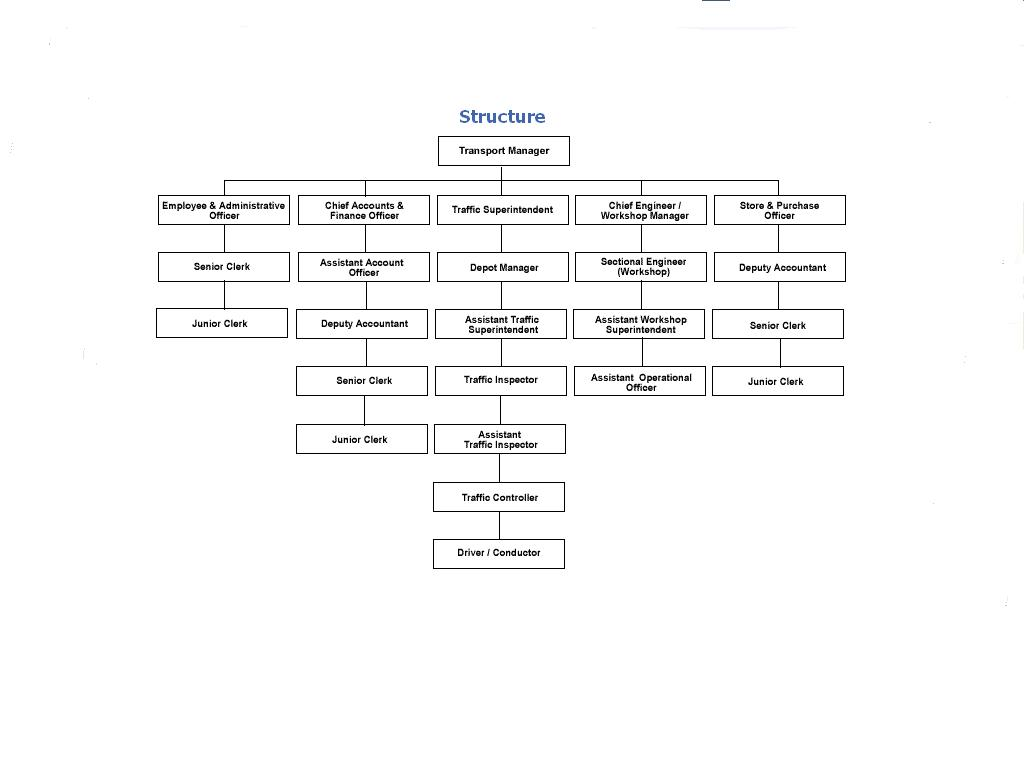 organization structure of sainsburys management essay Organizational structures used by uk supermarkets organizational structures used by uk supermarkets organizational structure can be defined as the formal and informal framework of.