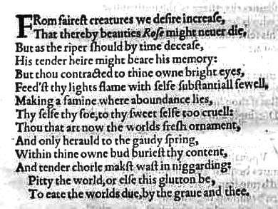essay suburban sonnet gwen harwood
