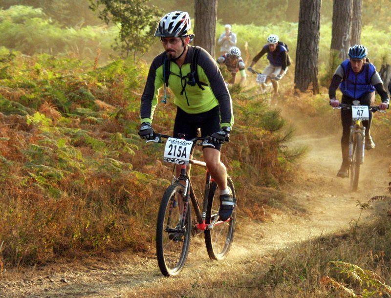 Mikes Bikes Report Essay Sample