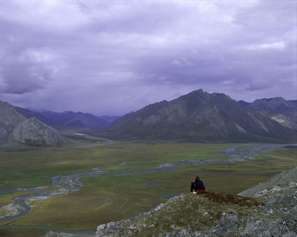 Should we drill for oil in Alaska's wilderness?