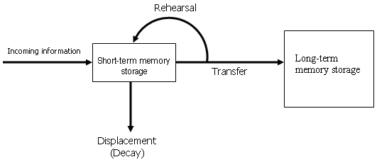the three information stores of the atkinson model of memory We'll begin our discussion of memory with a comprehensive and influential model of how human memory works the model is called the modal model and was developed by atkinson and shiffrin (1968) to describe how information is encoding, stored, and retrieved from memory.
