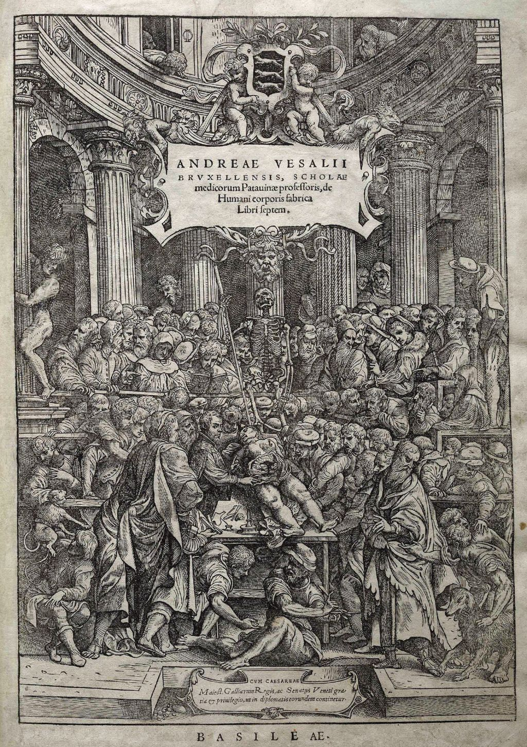 Andreas Vesalius - Father of Modern Anatomy - WriteWork