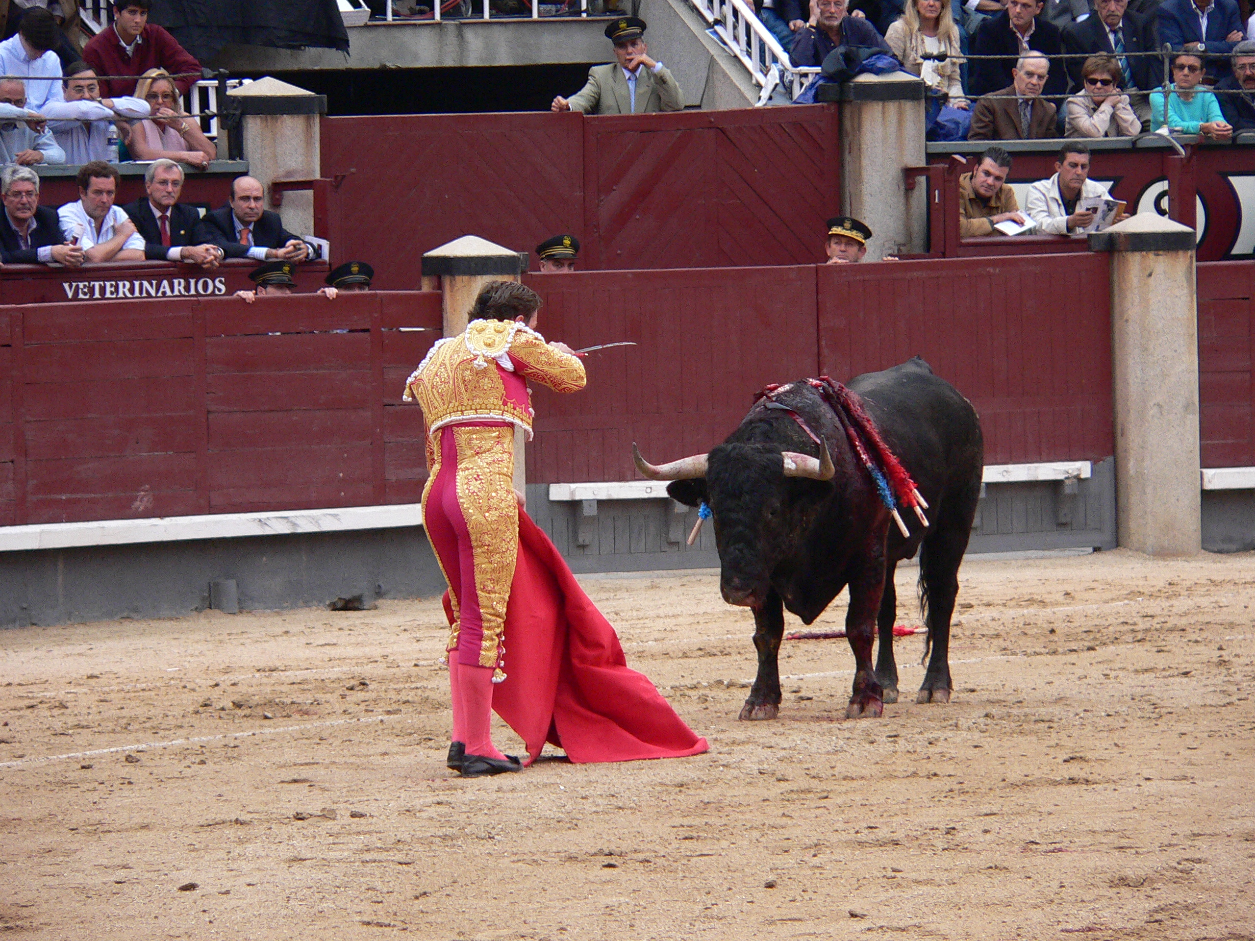 the sun also rises bullfighting scenes essay It seems as though the quotes about bullfighting in the sun also rises often  correlate to the multitude of difficulties the characters face,.