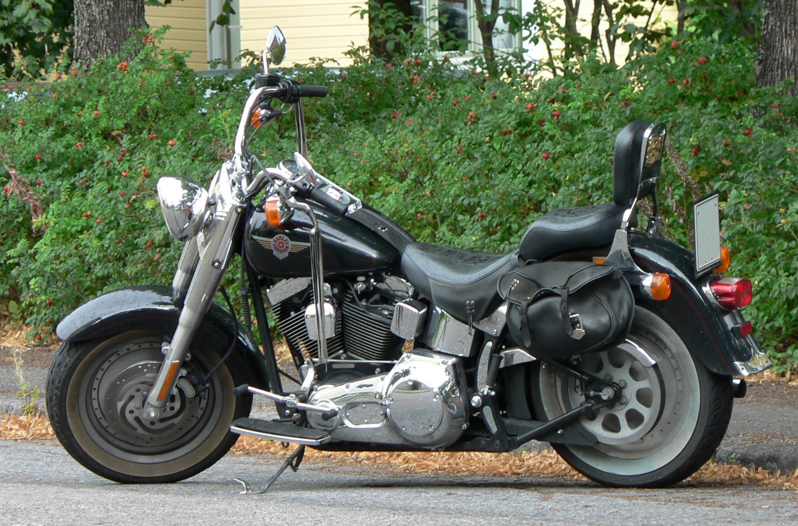 harley davidson 9 essay Swot analysis of harley davidson presents the various strengths, weaknesses, opportunities and threats of the brand harley davidson with its strong image of quality.