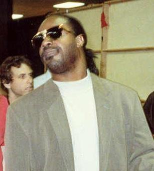 stevie wonder a biography essay Free stevie wonder papers, essays, and research papers.