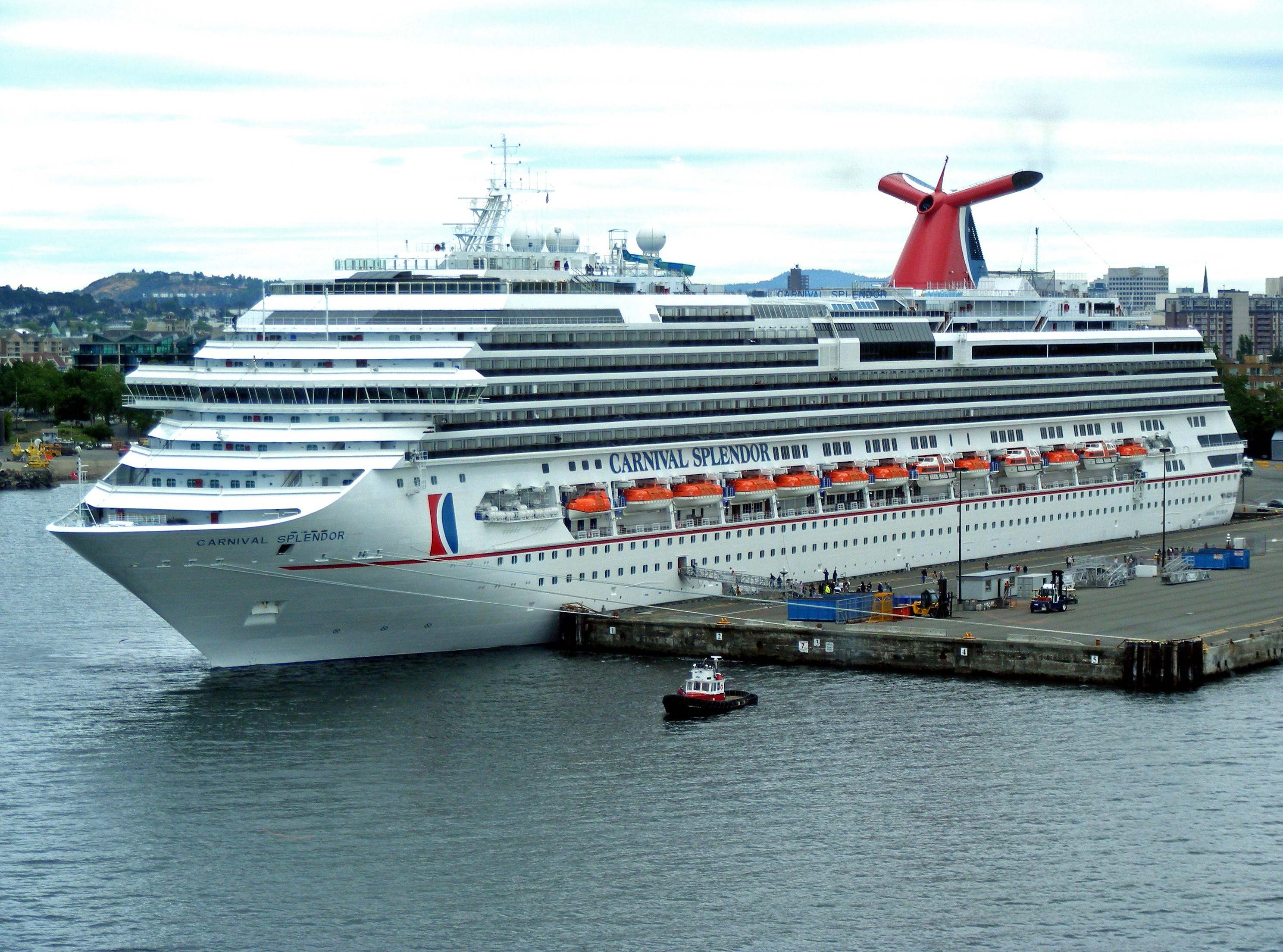 carnival cruises essay Business case study analysis, solution - royal caribbean cruise line ltd.