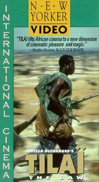 social commentary in african cinema essay